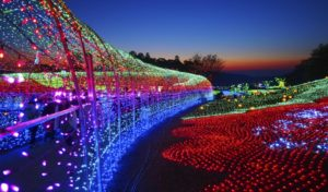 The Japans Winter Light Festival - Kuwana City in Nabato