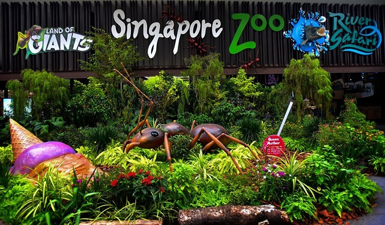 Top Travel Singapore Destinations To Visit In The Country - Singapore Zoo
