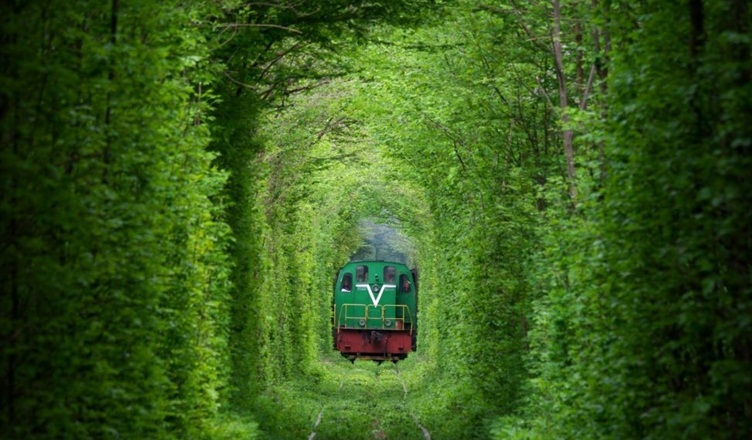 Tunnel of Love Klevan Ukraine - Amos Chapple RFERL